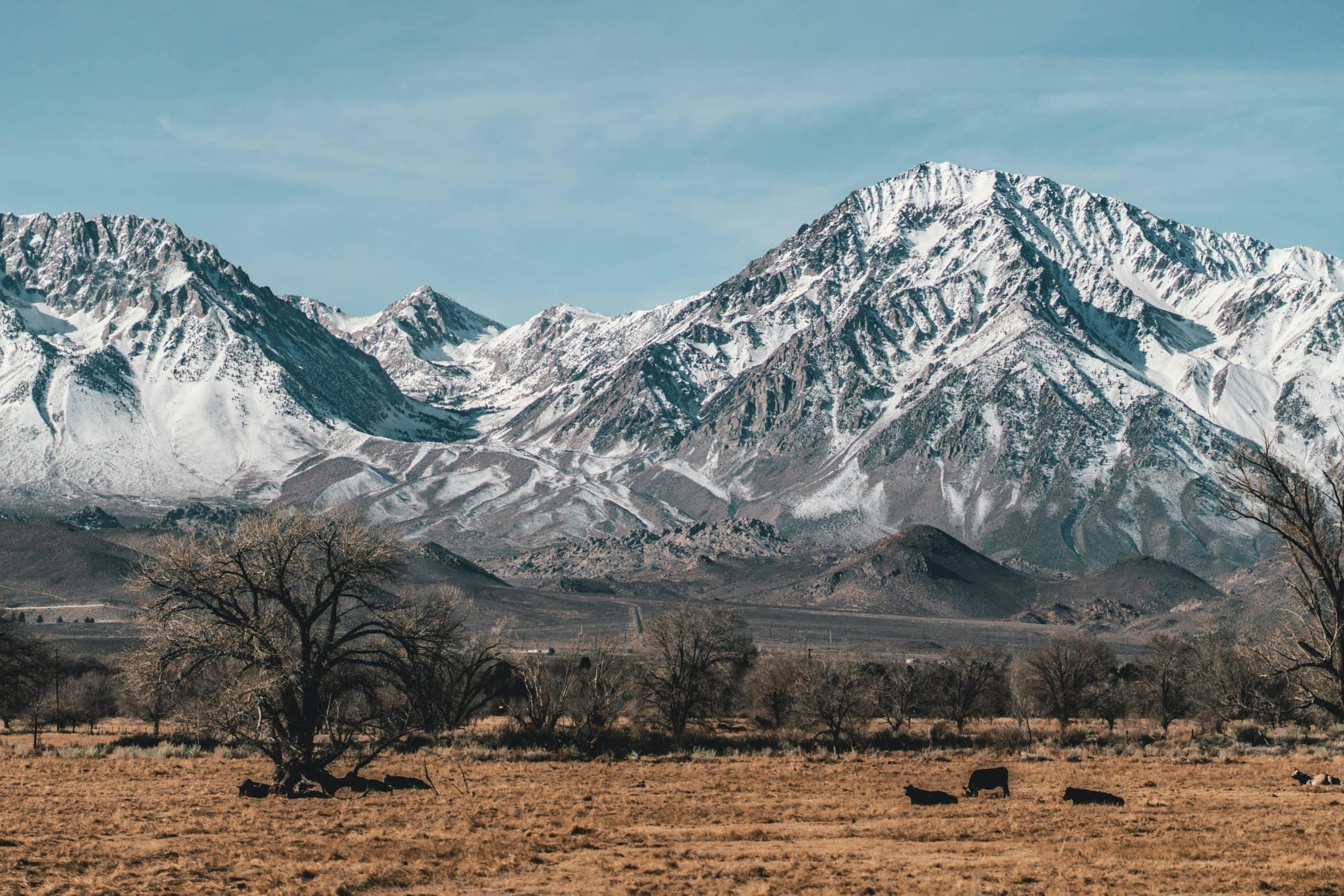 Bishop, California mountains.