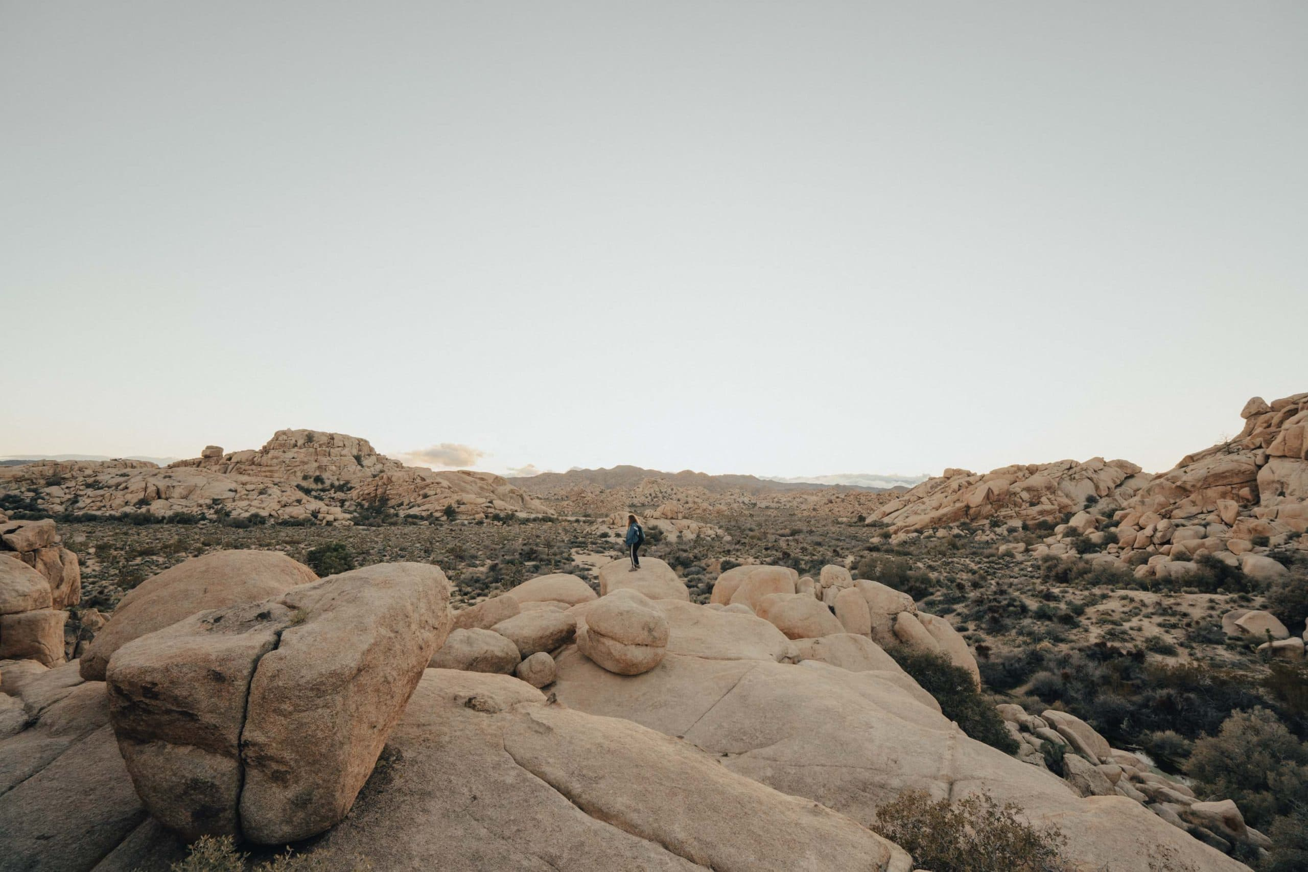 Joshua Tree National Park in California, one of the best places to elope.