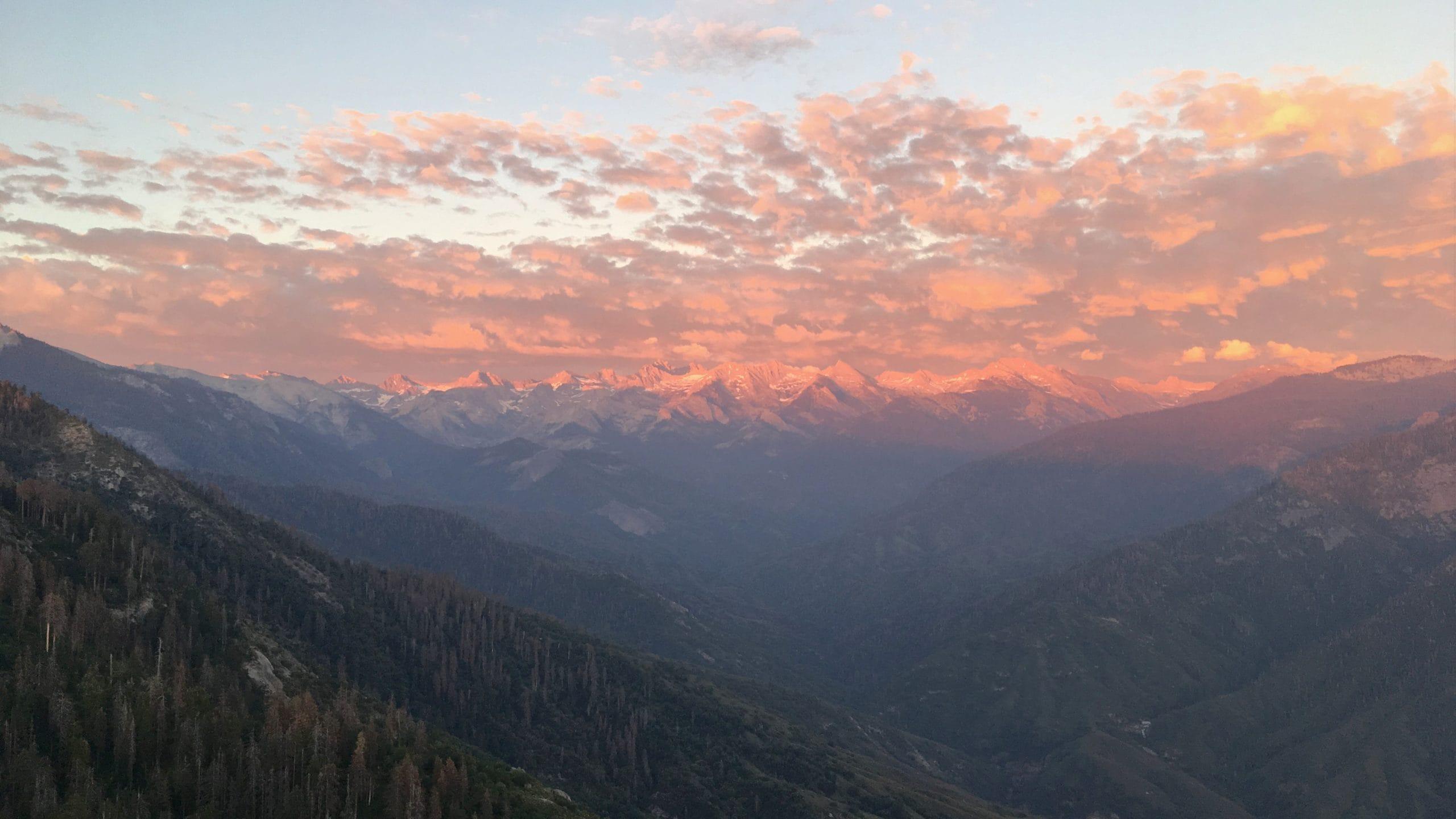 Sequoia National Park in California.
