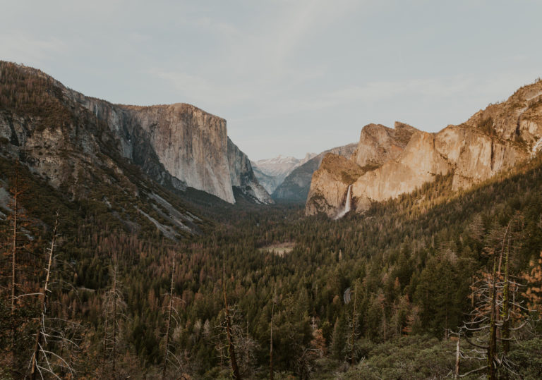 The Best Yosemite Wedding Guide for 2021 [Venues, Packages, + More!]