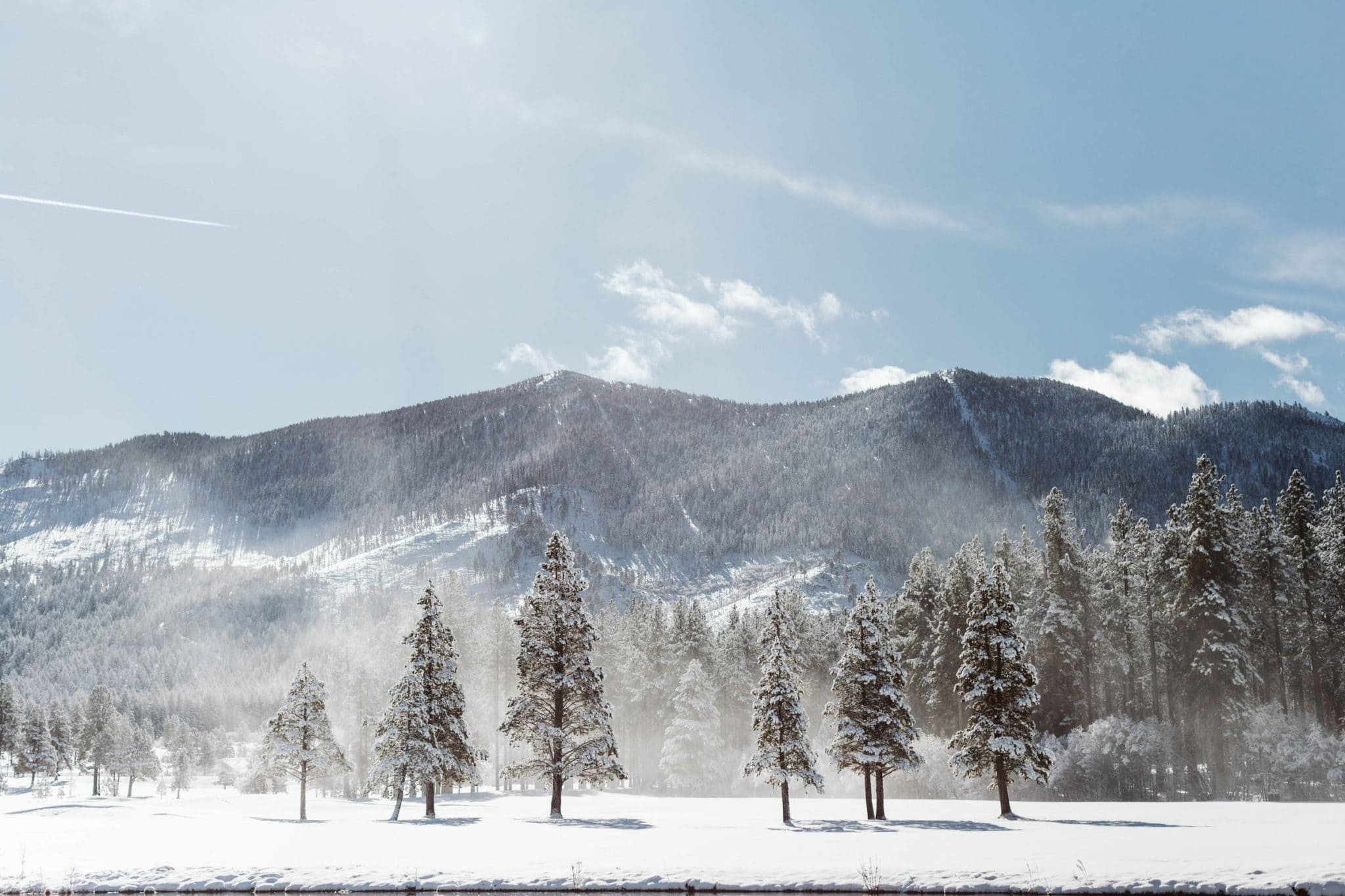 Snow covered trees and mountains in Lake Tahoe.