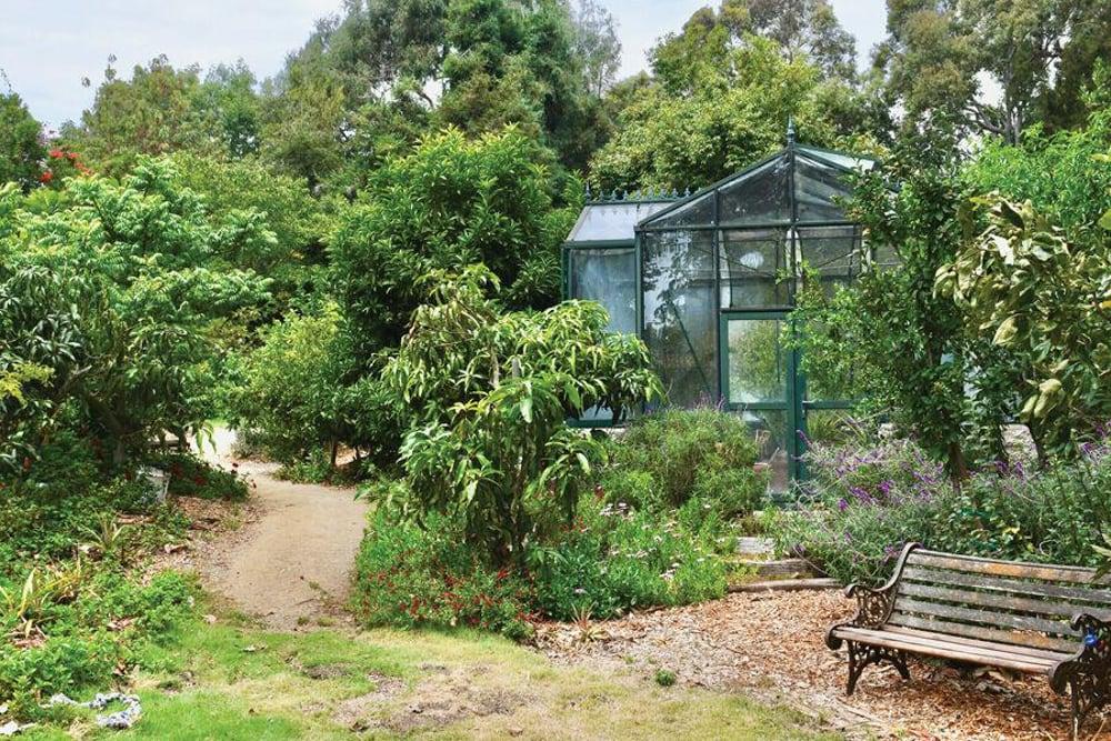 An image of plants at Malibu Secret Gardens, an outdoor wedding venue in Malibu.