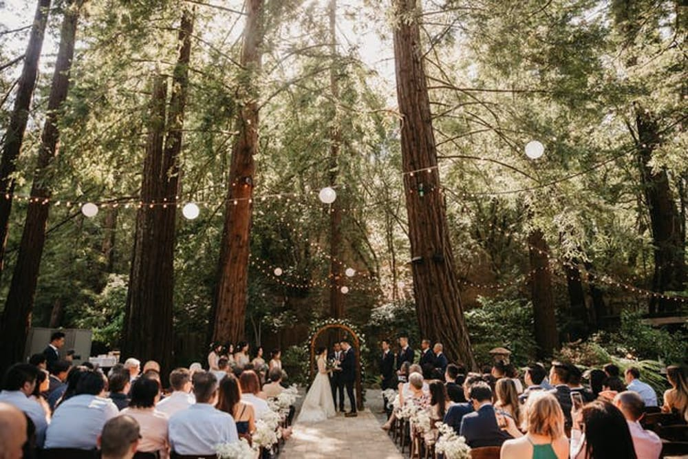 A couple getting married at Deer Park Villa, a forest wedding venue in San Francisco, California.
