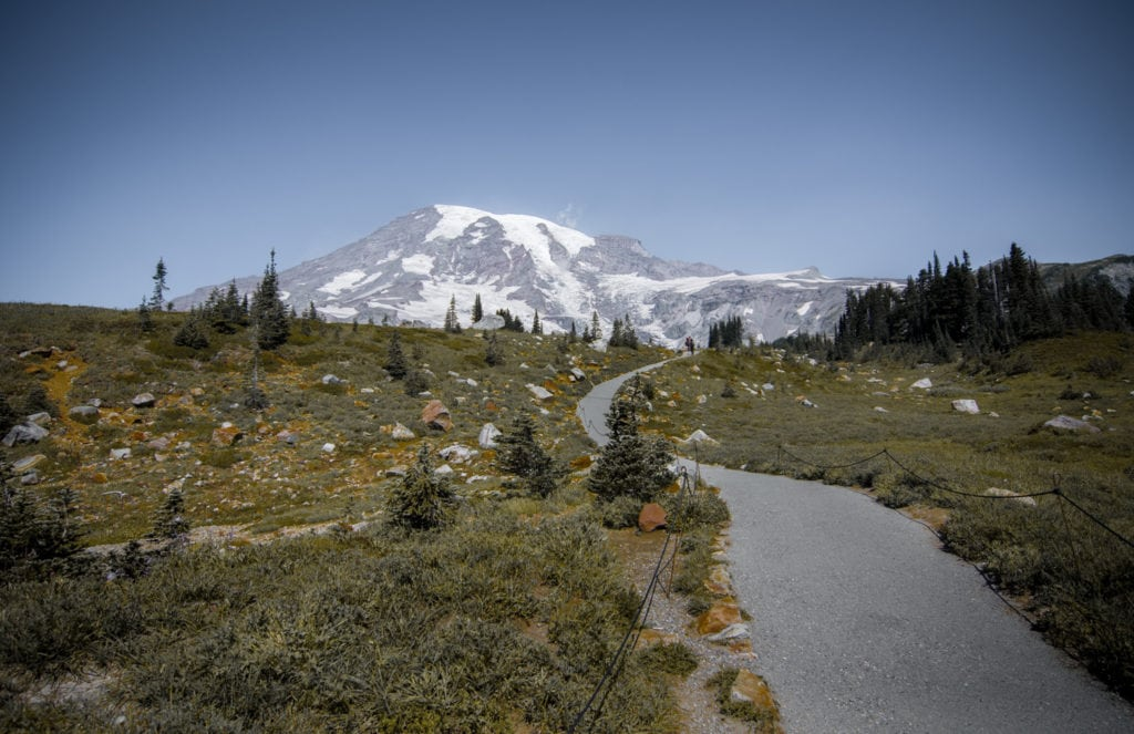 Mount Rainier National Park in Washington, a mountain wedding venue.