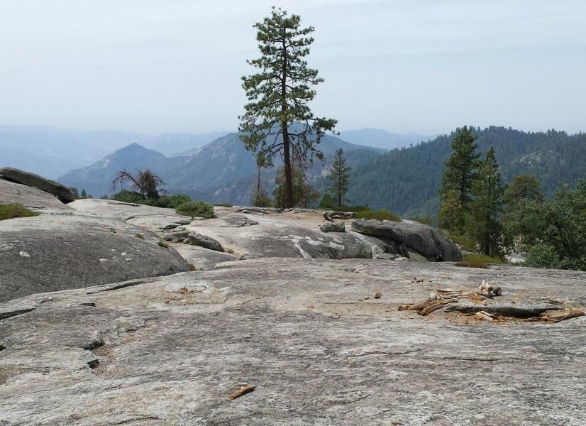 Beetle Rock lookout in Sequoia National Park.