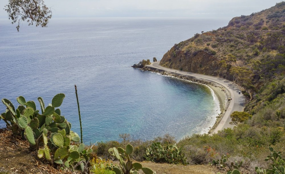 Lover's Cove on Catalina Island.