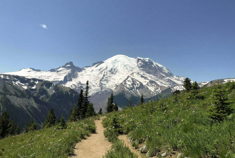 The Ultimate Mt. Rainier Wedding Guide for 2021